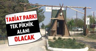 Tabiat Parkı Tek Piknik Alanı Olacak