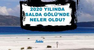 2020 Yılında Salda Gölünde Neler Oldu?